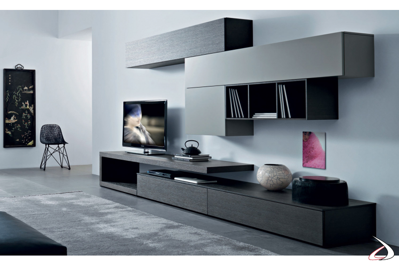 Furniture for the living room with modern wall units