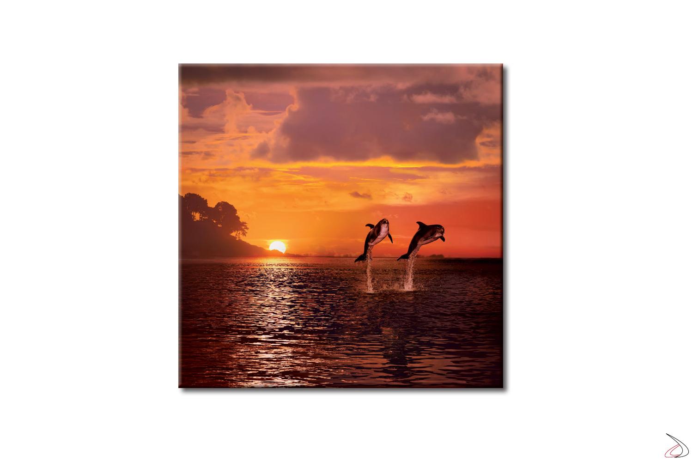 Quadro con delfini su sfondo di un tramonto sul mare.